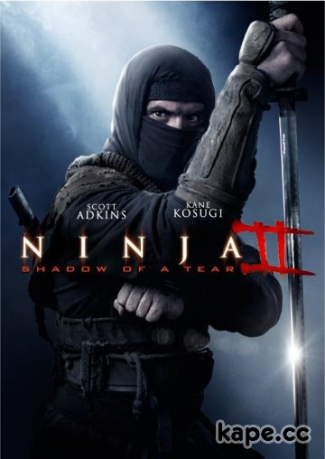 Ниндзя 2 / Ninja: Shadow of a Tear (2013)